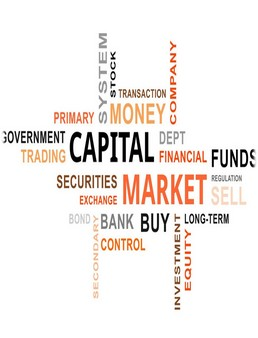 Capital Market in India